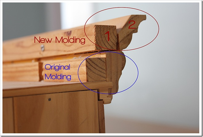 molding copy