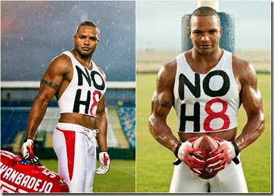 brendon-ayanbadejo-noh8-football