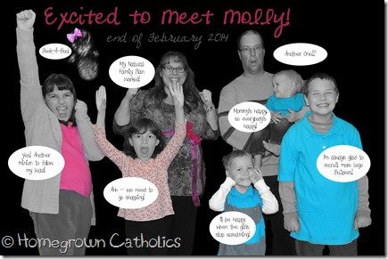 Large Family Baby Gender Reveal - Homegrown Catholics