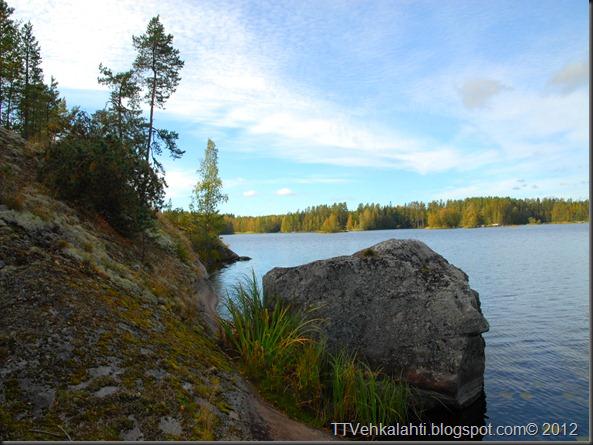 ötökät ikkunssa haukijärvi keloja 035