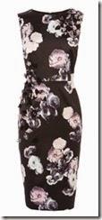 Coast Floral Print Dress