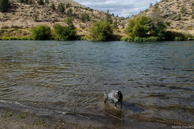 Deschutes River (8 of 14)