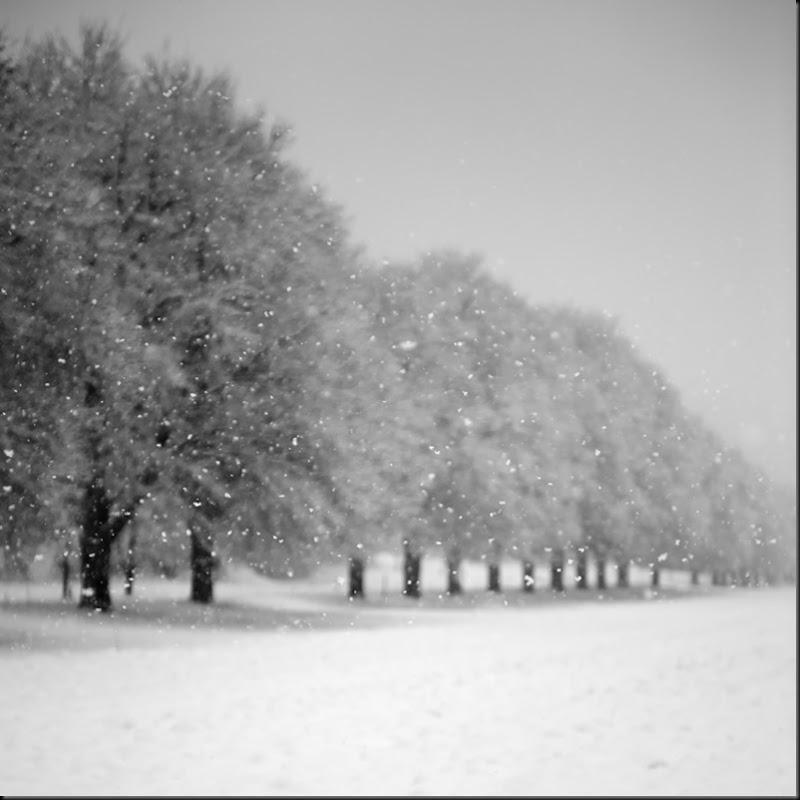 Blanc, léger, doux, la neige ....