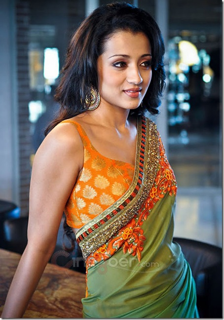 Trisha Latest Hot Photoshoot (8)