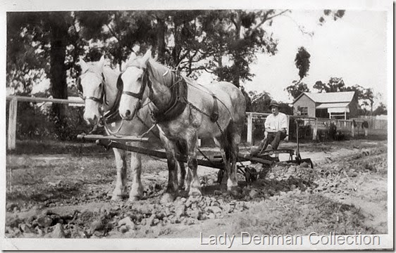 Harold-Parnell-preparing-road-surface-at-Huskisson