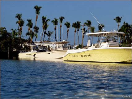 sunshine key marina