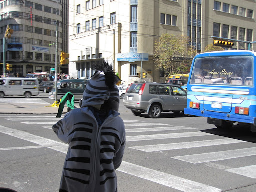 Crossing guards / zebras