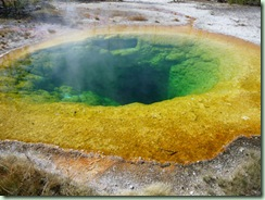 Day13Yellowstone Morning Glory pool