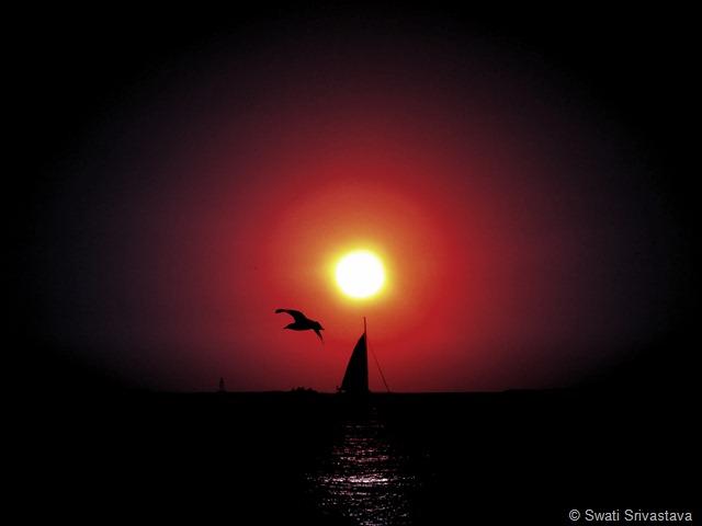 Sun_8