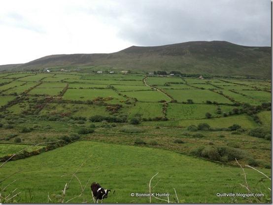 Ireland2013 703