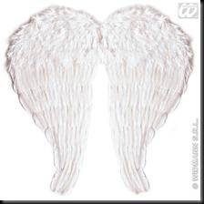 angeles y hombres alados (13)