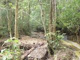The river near the start of the hike to Sibuatan (Daniel Quinn, August 2011)