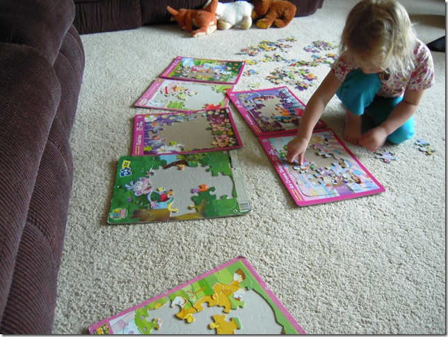 puzzles 013