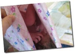 living w-alvarez and new baby 042