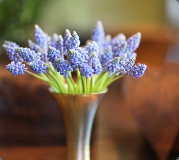 florali1