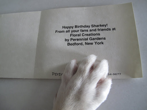 And just look what the card says.  How did thy know it was my birthday?