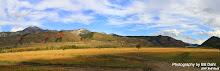 Swan Valley II Panorama