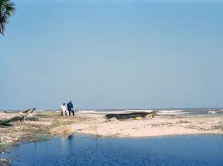 Le cliché de la plage Kumbi du photographe Zadic Kangufu