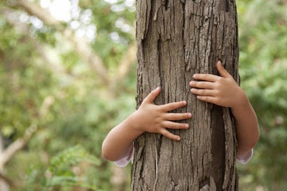 young-child-hugging-a-tree-in-the-forest