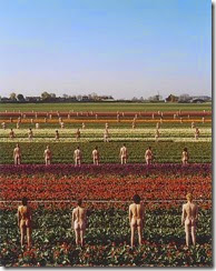 spencer-tunick (53)