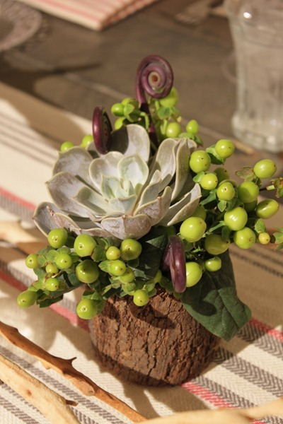 Hello Darling - Organic   Vintage Sports Bar Mitzvah, succulent and berries