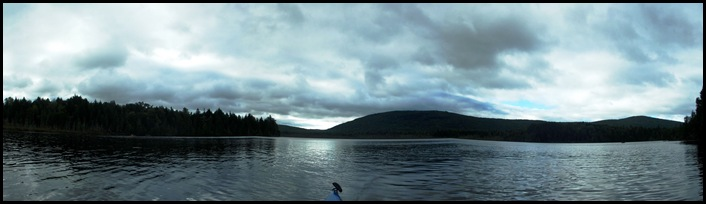 Prong Pond 093