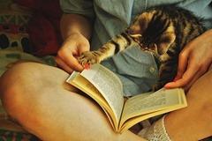 """""""pera, que eu ainda não terminei de ler"""""""