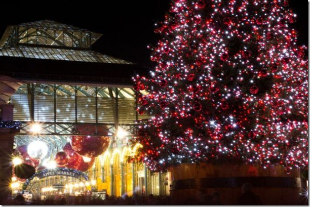 best-christmas-lights-houses-28