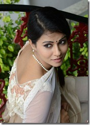Sharmila-Mandre-latest-photos