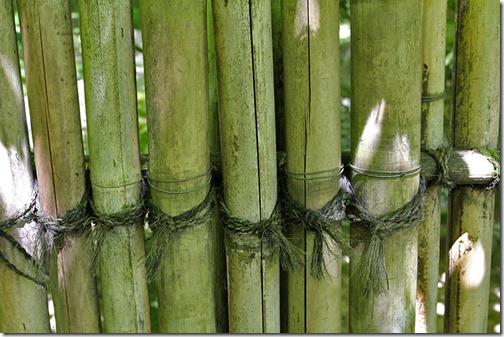 100726_Portland_Japanese_Garden_bamboo_fence_detail