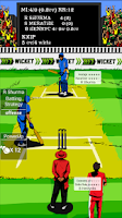 Screenshot of Hit Wicket Premier League