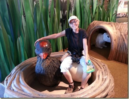 Wetlands Visitor Cntr Las Vegas (9)