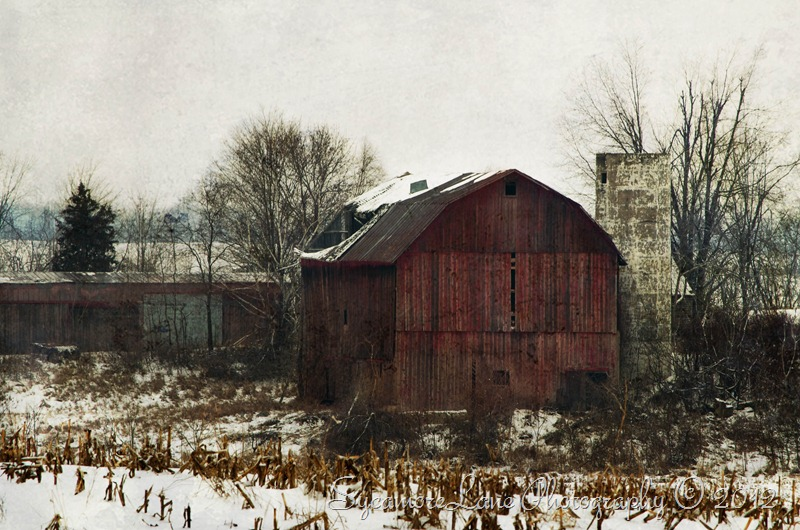winter barn-web