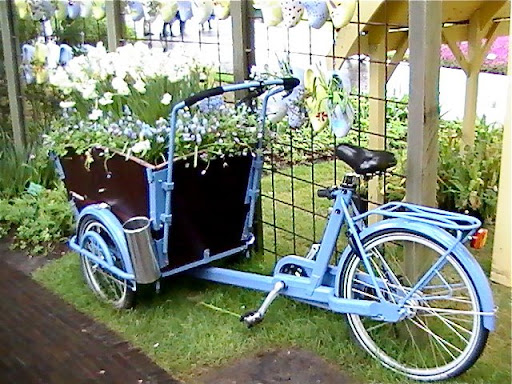 Bike used as a flower container in Amsterdam.