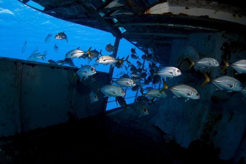 cayman-island-shipwreck-2