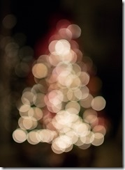 20121224 - Navidad-8