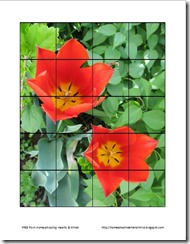 tulip preschool puzzle thumbnail