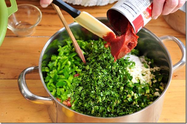 salsa (24 of 63)