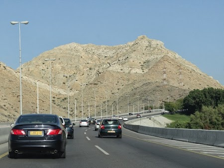 09. Dealuri in Oman.JPG