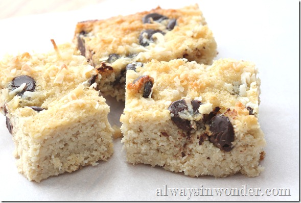 grain_free_coconut_bars (16)