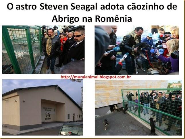 steven-seagal2