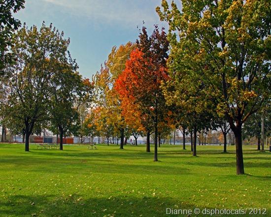 IMG_6949 Zwicks Park