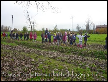 I bambini delle classi 1° della Scuola Primaria di Padulle piantano il grano! (50)