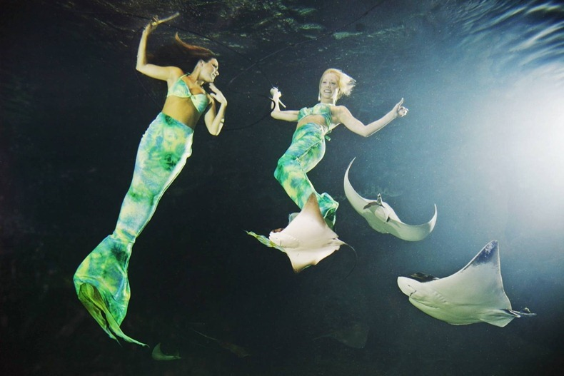 weeki-wachee-mermaids-8