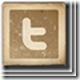 twitter-300-n53332332323