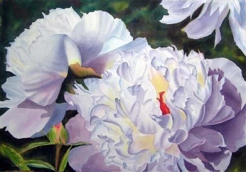 hortencia-pintura-flores