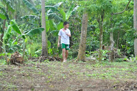 pinoyecofarm november_0010.JPG