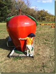 hugging apple