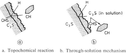 Schematic representation of proposed hydration mechanisms