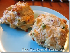 Bacon Jalapeno Biscuits - The Backyard Farmwife